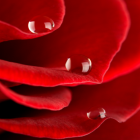 Menstruacija boli in je odveč!